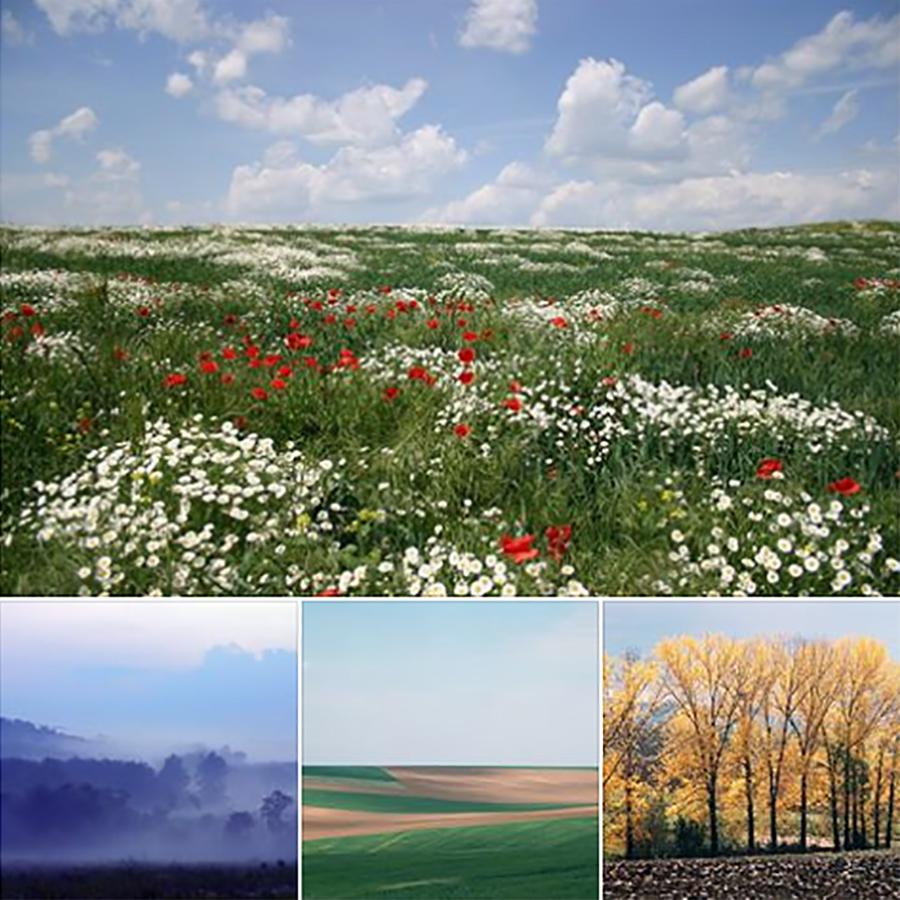 Фотоконкурс за календар на сайта на тема Сезони